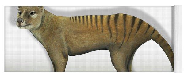 Tasmanian Tiger-thylacinus Cynocephalus-tasmanian Wolf-lobo De Tasmania-tasmanian Loup-beutelwolf    Yoga Mat