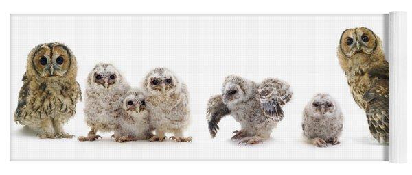 Tawny Owl Family Yoga Mat