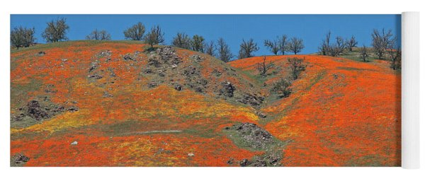 Yoga Mat featuring the photograph Tejon Pass Poppy Panorama by Lynn Bauer
