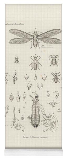Termites, Macrotermes Bellicosus Yoga Mat