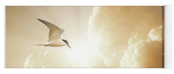 Tern In Flight, Spiritual Light Of Dusk Yoga Mat