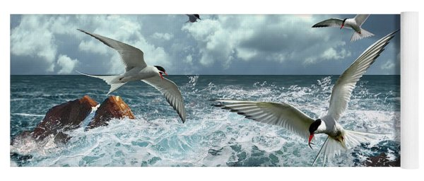 Terns In The Surf Yoga Mat