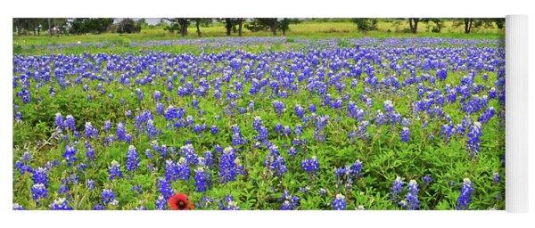Texas Spring  Yoga Mat