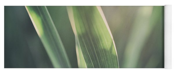 The Allotment Project - Sweetcorn Leaves Yoga Mat