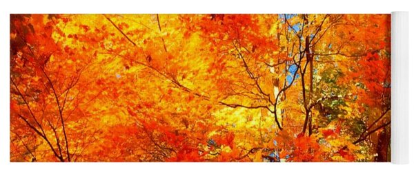 The  Beauty Of Autumn Yoga Mat