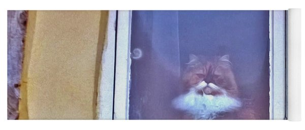 The Cat In The Window Yoga Mat