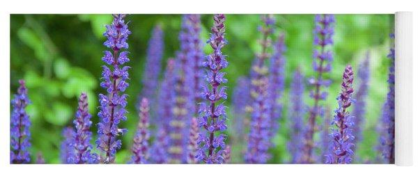 The Color Purple - Longwood Gardens Yoga Mat