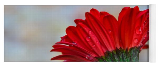 The Daisy In Red Yoga Mat