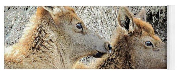 The Elk Of Winter  Yoga Mat