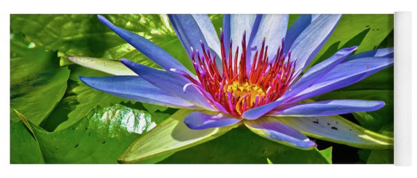 The Fire Lily Yoga Mat