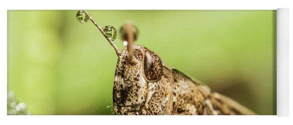The Grasshopper Portrait Yoga Mat