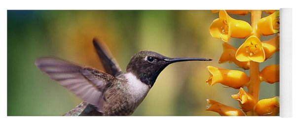The Hummingbird And The Bee Yoga Mat