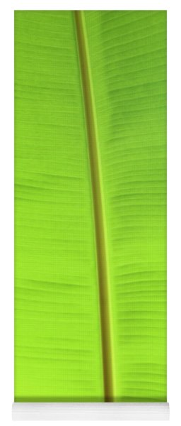 The Jungle Illuminated Yoga Mat