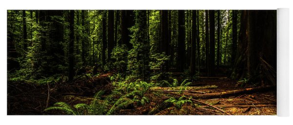 The Light In The Forest No. 2 Yoga Mat
