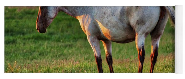 The Mare Yoga Mat