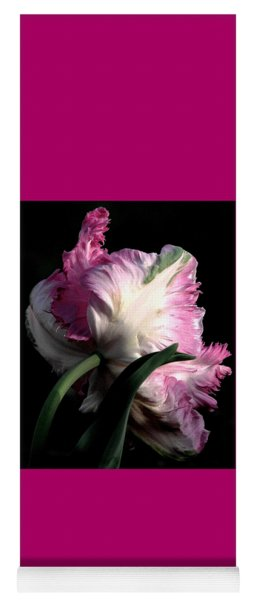 The Parrot Tulip Queen Of Spring Yoga Mat