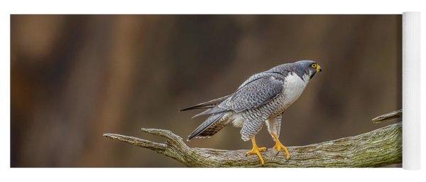 The Peregrine Falcon Yoga Mat