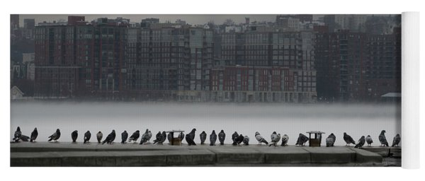Yoga Mat featuring the photograph The Pigeon Gallery by Chris Lord