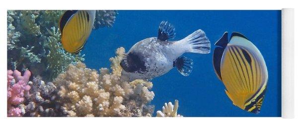 The Red Sea Underwater World Yoga Mat