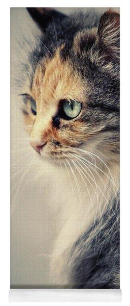 The Sad Street Cat Yoga Mat