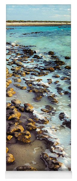 Yoga Mat featuring the photograph The Stromatolite Family Enjoying Its 1277500000000th Sunset by T Brian Jones