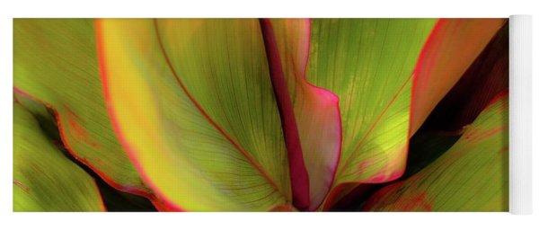The Ti Leaf Plant In Hawaii Yoga Mat