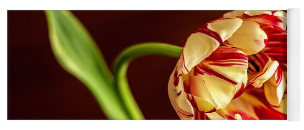 The Tulip's Bow Yoga Mat