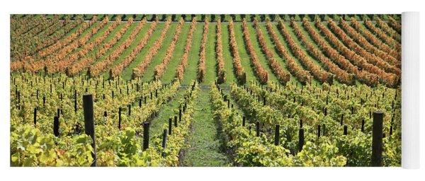 The Vines At Denbies Dorking Surrey Uk Yoga Mat
