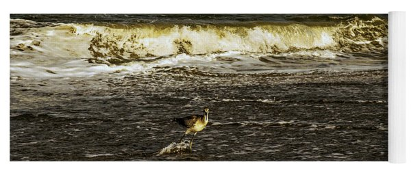 The Wading Willet  Yoga Mat