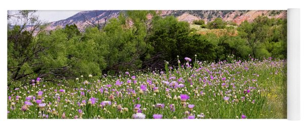 Thistles In The Canyon Yoga Mat