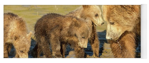 Three Cubs And Mother Drinking At The River Yoga Mat