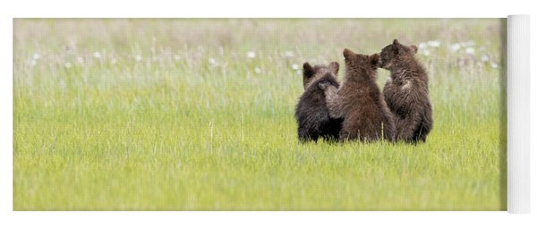 Three Cubs Watching Yoga Mat