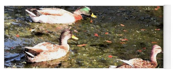 Three Ducks Yoga Mat