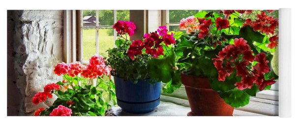 Three Pots Of Geraniums On Windowsill Yoga Mat