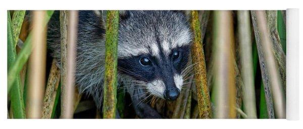 Through The Reeds - Raccoon Yoga Mat