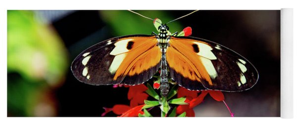 Tiger Longwing Butterfly Yoga Mat