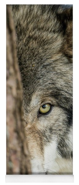 Timber Wolf Picture - Tw285 Yoga Mat