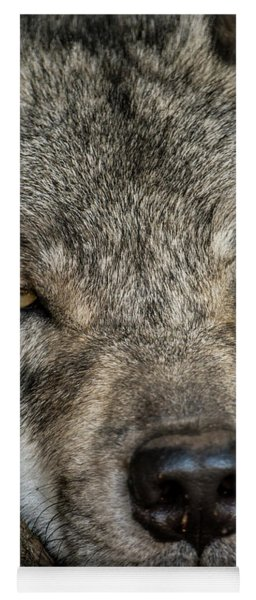 Timber Wolf Picture - Tw288 Yoga Mat