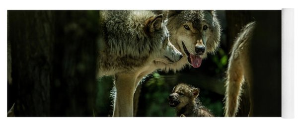 Timber Wolf Picture - Tw340 Yoga Mat