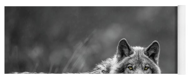 Timber Wolf Picture - Tw420 Yoga Mat