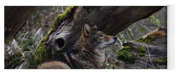 Timber Wolf Yoga Mat