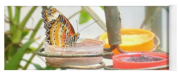Butterfly Meal Time Yoga Mat