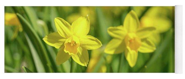 Tiny Daffodils Yoga Mat