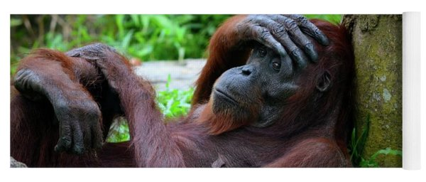 Tired Female Orangutan Ape Rests Against Tree With Hand On Her Head Yoga Mat