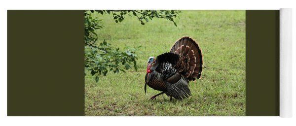 Tom Turkey In Spring Yoga Mat