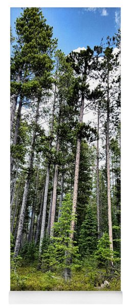 Towering Forest Yoga Mat