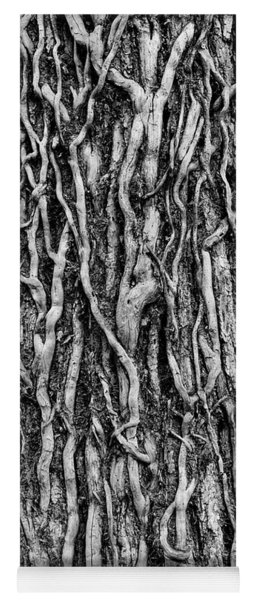 Tree Bark Abstract Yoga Mat