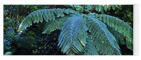 Tree Fern Of New Zealand Yoga Mat