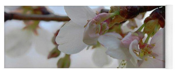 Dogwood Branch Pink Yoga Mat