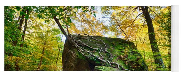 Tree Growing From Living Rock On Smuggler's Notch Yoga Mat
